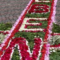 Fronleichnam 2015 - Blumenteppich