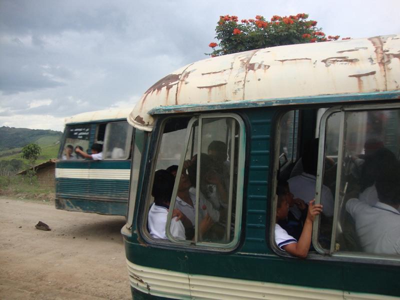 K800_Schulbus 4