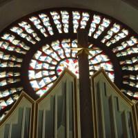 Orgel, Stern und Rosette